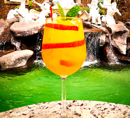 Gin-Tonic-fruta-de-la-pasion-maracuya-restaurante-anfiteatro-de-villa